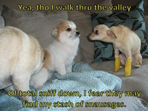 Yea, tho I walk thru the valley   Of total sniff down, I fear they may find my stash of snausages.