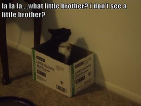 la la la....what little brother? i don't see a little brother?