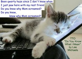 """Kitty Sleep-Editing"" (TTO ""Do You Know What I Mean"" by Lee Michaels)"