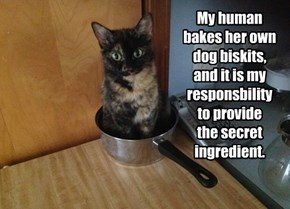 My human bakes her own dog biskits,  and it is my responsbility  to provide  the secret ingredient.
