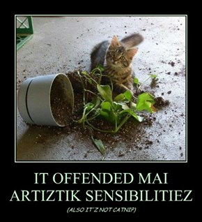 IT OFFENDED MAI ARTIZTIK SENSIBILITIEZ