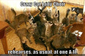Crazy Cat Lady Choir  rehearses, as usual, at one A.M.