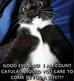 GOOD EVENING!  I AM COUNT CATULA!  WOULD YOU CARE TO COME IN FOR A BITE???