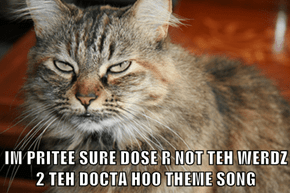 IM PRITEE SURE DOSE R NOT TEH WERDZ 2 TEH DOCTA HOO THEME SONG