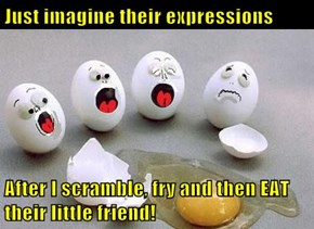 Just imagine their expressions  After I scramble, fry and then EAT their little friend!