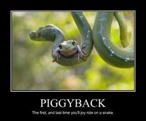 PIGGYBACK