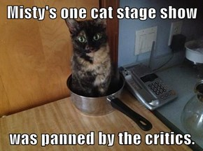 Misty's one cat stage show  was panned by the critics.