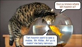Just befor teh goldfish disappeared..