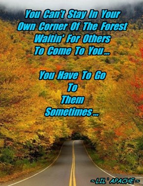 You  Can't  Stay  In  Your Own  Corner  Of  The  Forest Waitin'  For  Others To  Come  To  You ...  You  Have  To  Go   To   Them Sometimes ...