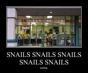 They Sell Waxed Snails?