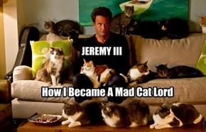How I Became A Mad Cat Lord