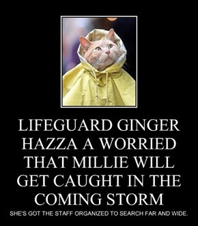 LIFEGUARD GINGER HAZZA A WORRIED THAT MILLIE WILL GET CAUGHT IN THE  COMING STORM