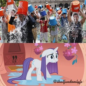 Who nominated Rarity?