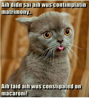 Aih didn sai aih wus contimplatin matrimony..  Aih taid aih wus constipated on macaroni!