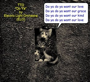 """We Can Has Forever Home?"" (TTO ""Do Ya"" by Electric Light Orchestra (ELO))"