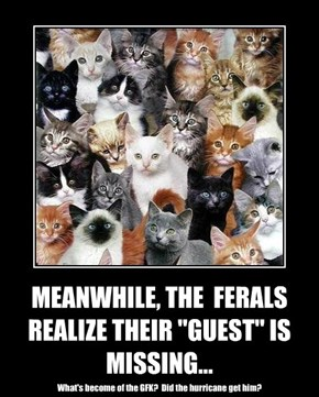 """MEANWHILE, THE  FERALS REALIZE THEIR """"GUEST"""" IS MISSING..."""