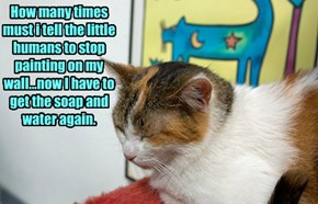How many times must i tell the little humans to stop painting on my wall...now I have to get the soap and water again.