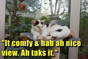 """""""It comfy & hab ah nice view. Ah taks it."""""""