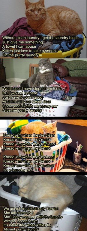 """""""Purrty Laundry""""  TTO of """"Dirty Laundry"""" by Don Henley (of the Eagles)"""