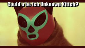 Could u be teh Unknown Kitteh?