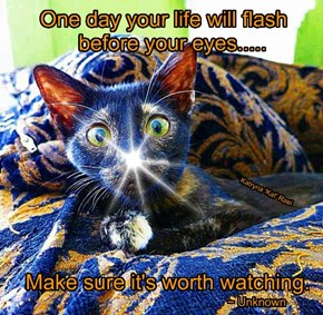 One day your life will flash           before your eyes.....