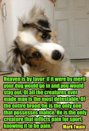 Heaven is by favor; if it were by merit your dog would go in and you would stay out. Of all the creatures ever made man is the most detestable. Of the entire brood, he is the only one that possesses malice. He is the only creature that inflicts pain for s