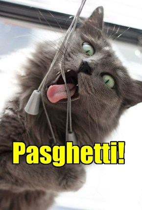 I can has pasghetti?
