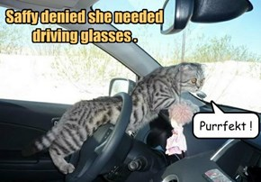 Saffy denied she needed driving glasses .