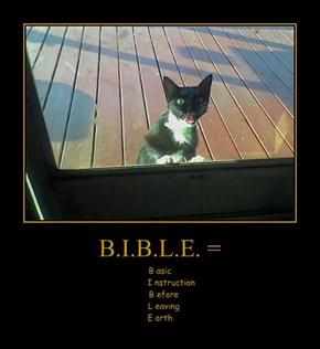 B.I.B.L.E. =