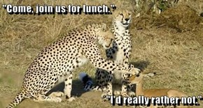 """""""Come, join us for lunch.""""  """"I'd really rather not."""""""