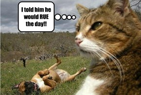 I told him he would RUE the day!!