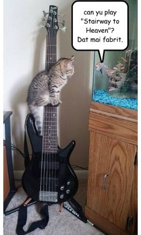 """can yu play """"Stairway to Heaven""""?  Dat mai fabrit."""