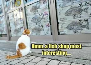 Hmm..a fish shop,most interesting....
