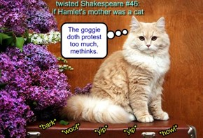 twisted Shakespeare #46: if Hamlet's mother was a cat