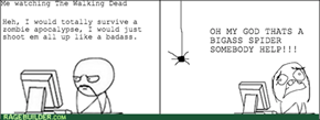 If I Had a Gun, I Would've Totally Gotten That Spider