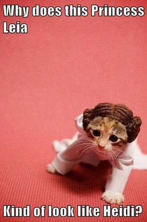 Why does this Princess Leia  Kind of look like Heidi?
