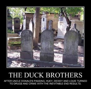 THE DUCK BROTHERS