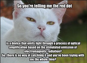 So you're telling me the red dot