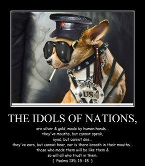 THE IDOLS OF NATIONS,