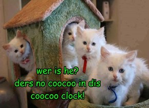 wer is he? ders no coocoo in dis coocoo clock!