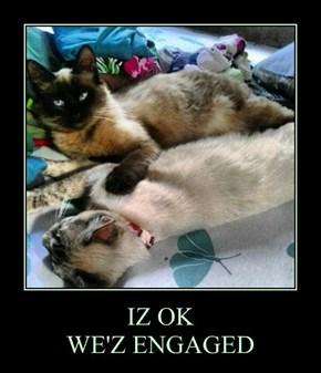 IZ OK WE'Z ENGAGED