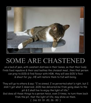 SOME ARE CHASTENED