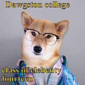 Dawgston college  class of elebenty fourteen