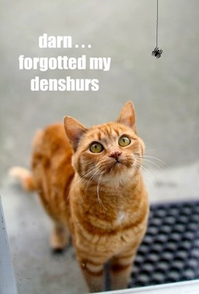 darn . . . forgotted my denshurs
