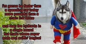 Super Dog IS, After All, A Dog