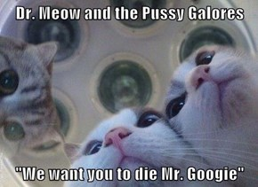 """Dr. Meow and the pu**y Galores  """"We want you to die Mr. Googie"""""""