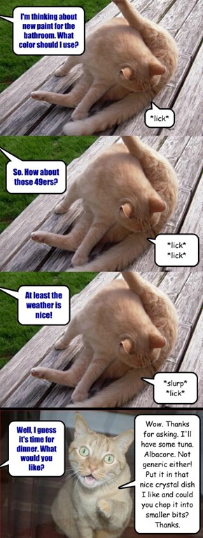 Chats With Your Cat