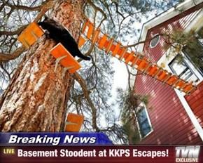 Breaking News - Basement Stoodent at KKPS Escapes!