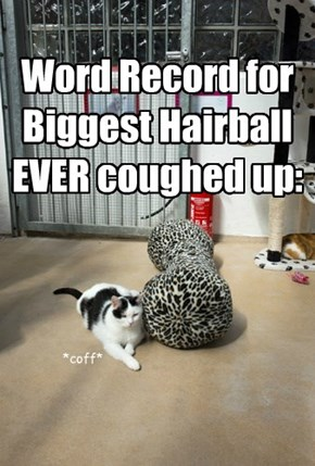 Word Record for Biggest Hairball EVER coughed up: