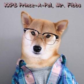 KKPS Prince-A-Pal, Mr. Fibbs